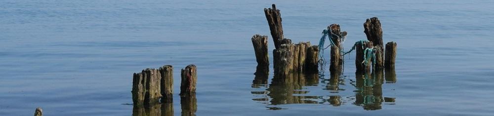 Alter Steg im Wasser